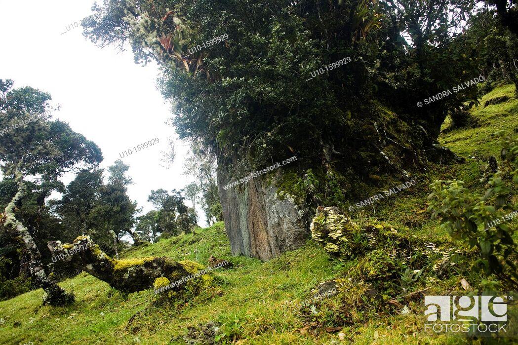 Stock Photo: National Park Puracé, Colombia.