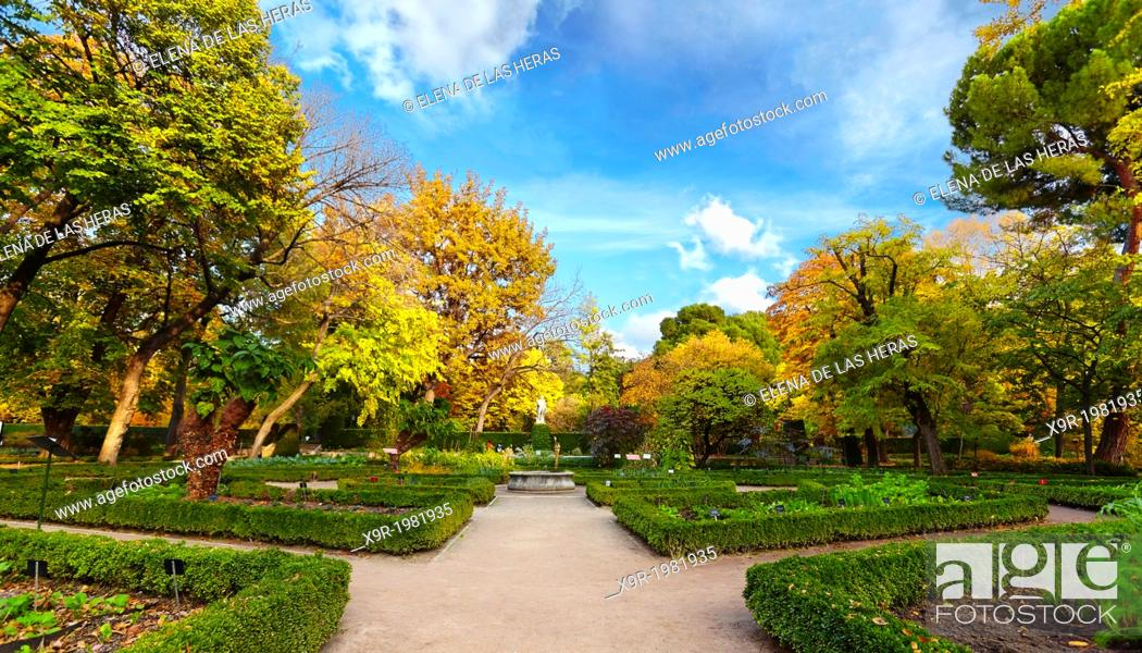 Stock Photo: Autumn at the Royal Botanical Garden. Madrid. Spain.