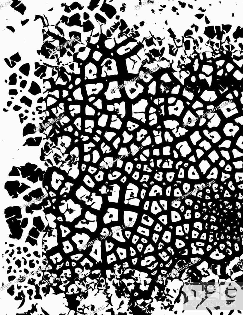 Vector: Editable vector illustration of cracked grunge pattern.