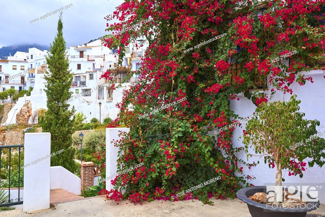 Stock Photo: Frigiliana, Axarquia, Costa del Sol, Malaga province, Andalusia, Spain.