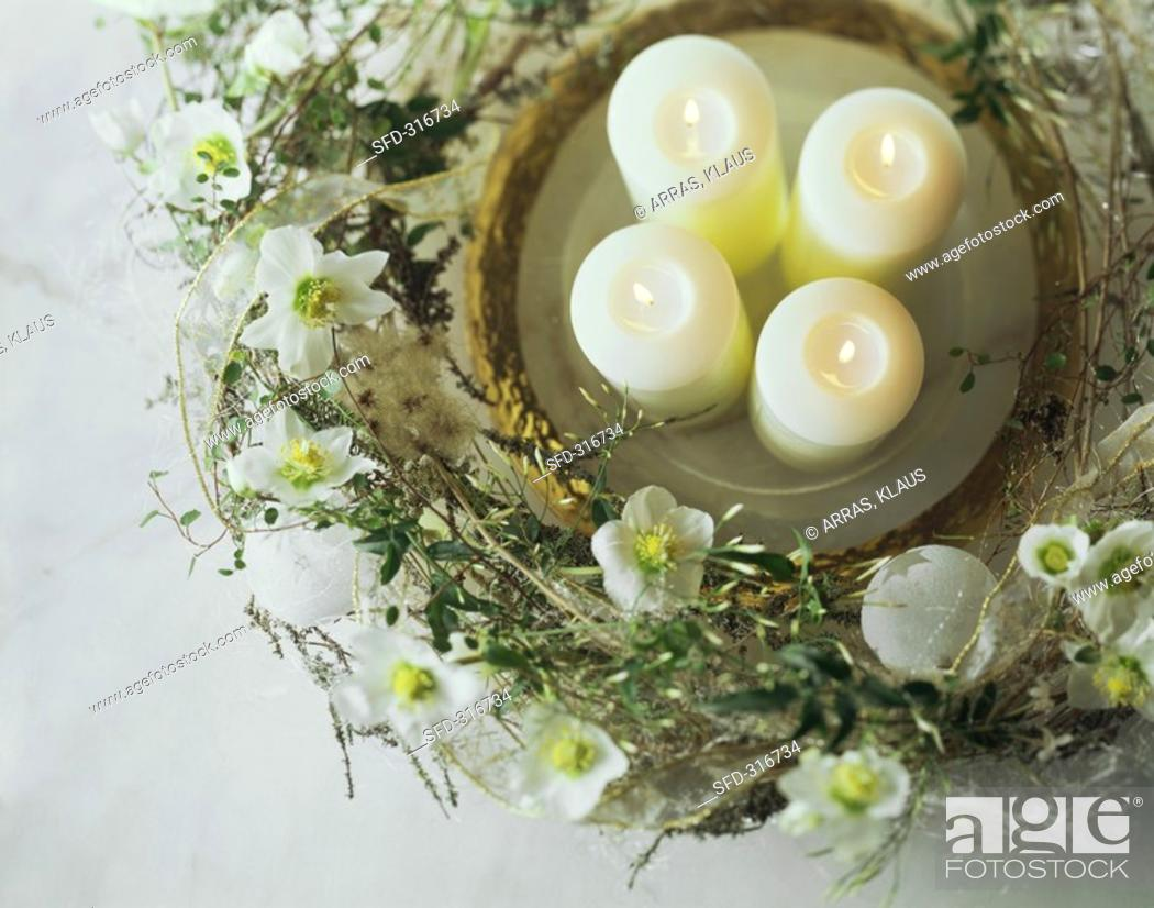Stock Photo: Four candles on plate surrounded by wreath of Christmas roses.