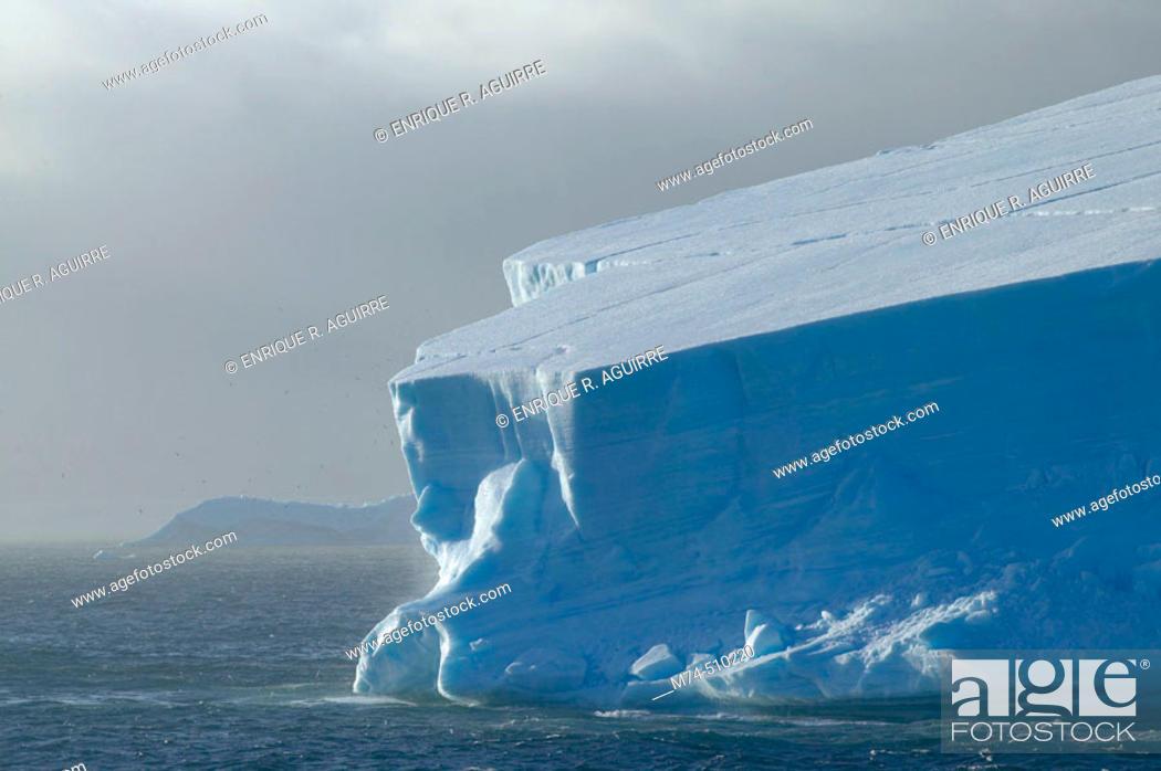 Stock Photo: Icebergs Antarctica.