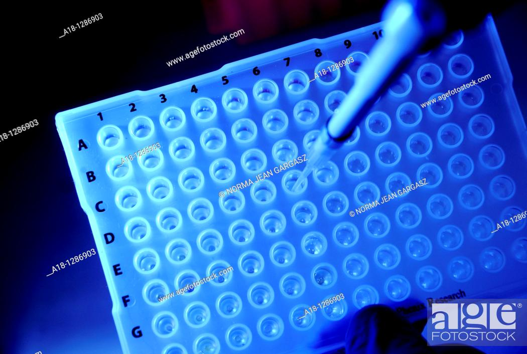 Stock Photo: Research for drugs for the treatment of cancer and Parkinsons Disease.