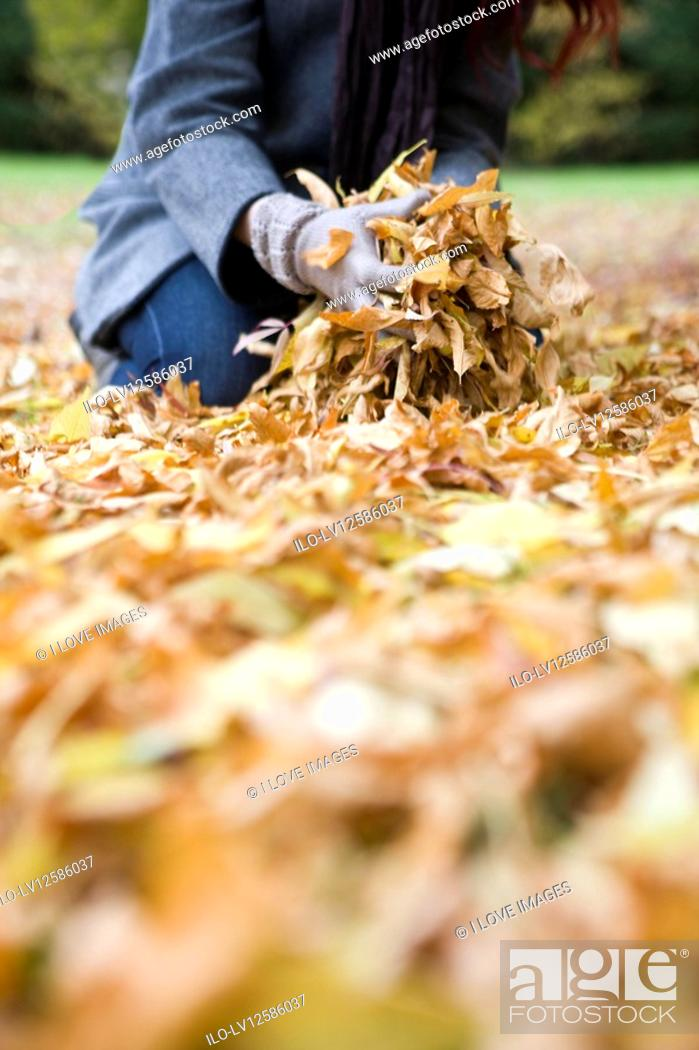 Stock Photo: A young woman gathering autumn leaves.