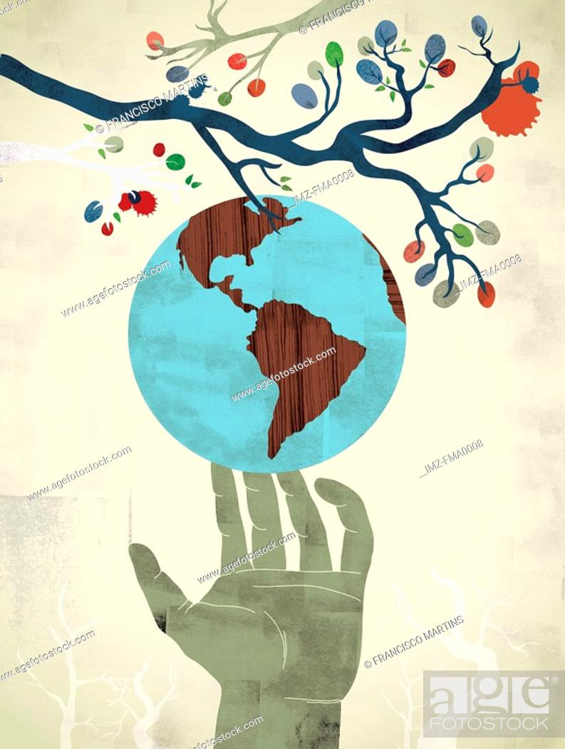 Stock Photo: A hand reaching to pick a globe shaped fruit from a tree.