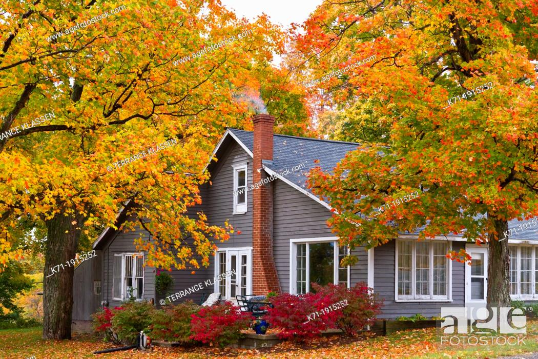 Imagen: A home in the forest with fall foliage color along Highway 119 in Michigan's Lower Peninsula.