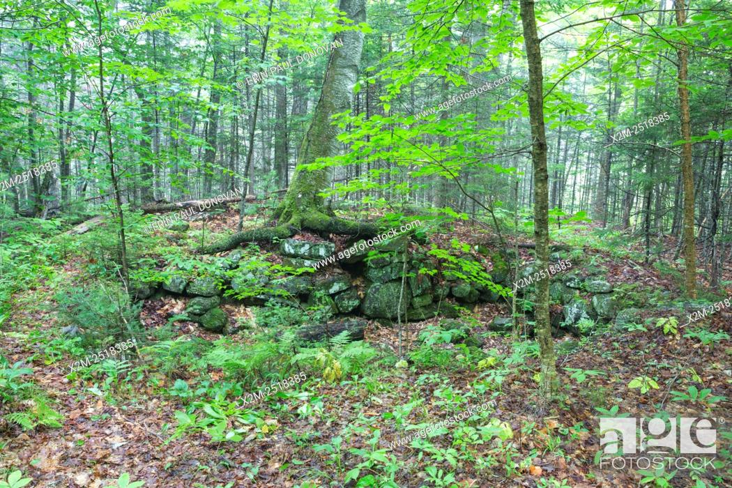 Stock Photo: The Ira Dustin Place home site cellar hole along Sandwich Notch Road in Sandwich, New Hampshire USA. During the early nineteenth century.