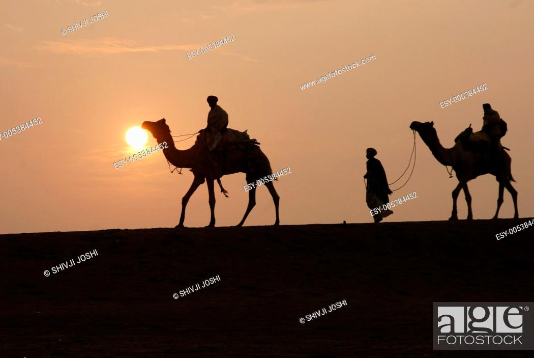 Stock Photo: Camels riders walking on sand dune during sunset in Khuri ; Jaisalmer ; Rajasthan ; India.
