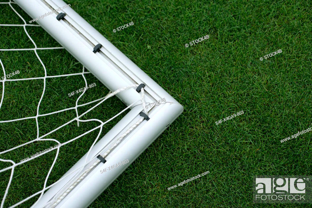 Stock Photo: Goal lying on grass.