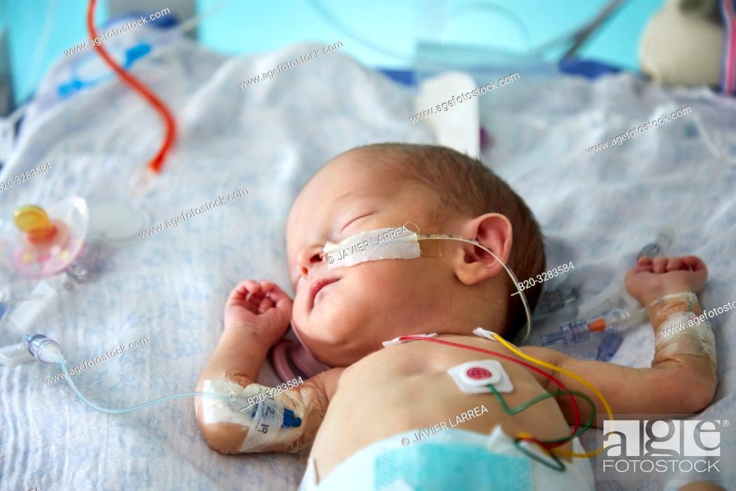 Stock Photo: Hospitalized baby, Neonatal pediatrics, Medical care, Neonate Intensive care Unit, UVI, ICU, Hospital Donostia, San Sebastian, Gipuzkoa, Basque Country, Spain.