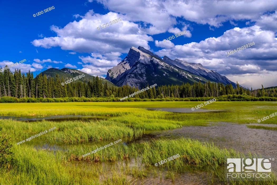Stock Photo: Canada, Alberta, Banff National Park, Banff, Vermilion Lakes against Tunnel Mountain and Mount Rundle.