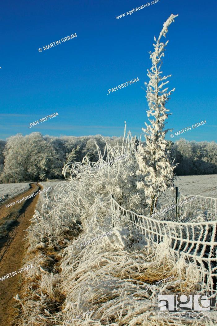 Stock Photo: winter scenery in snowy countryside, Wiesenburg, Brandenburg, Germany | usage worldwide. - Wiesenburg/Brandenburg/Germany.