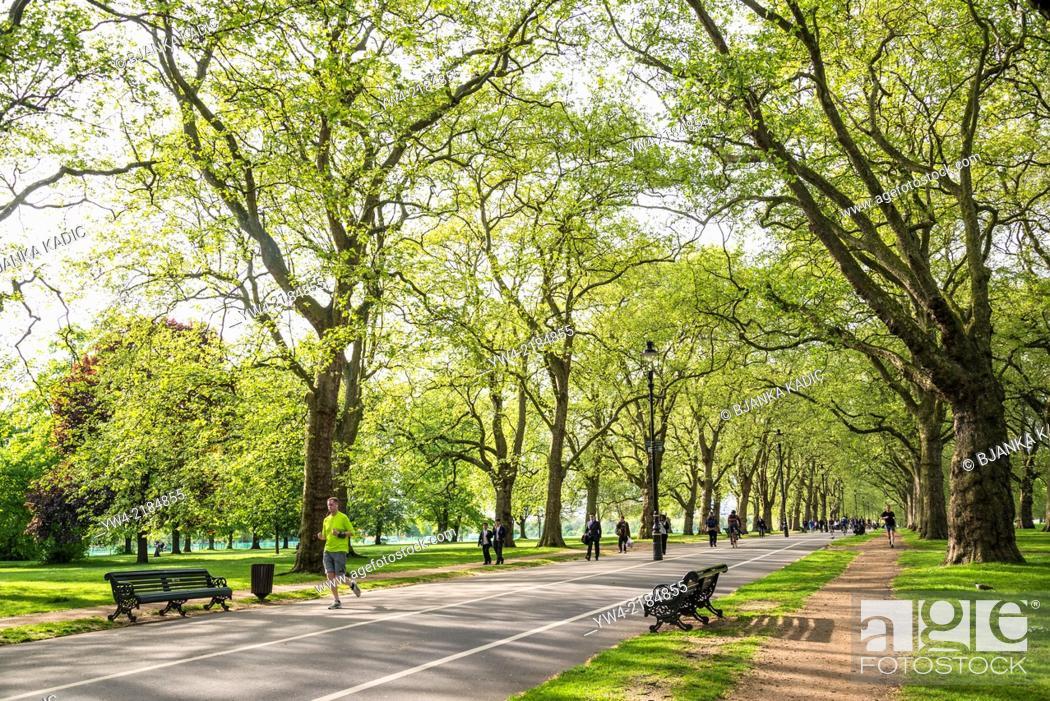 Stock Photo: Hyde Park, Broad Walk, London, UK.