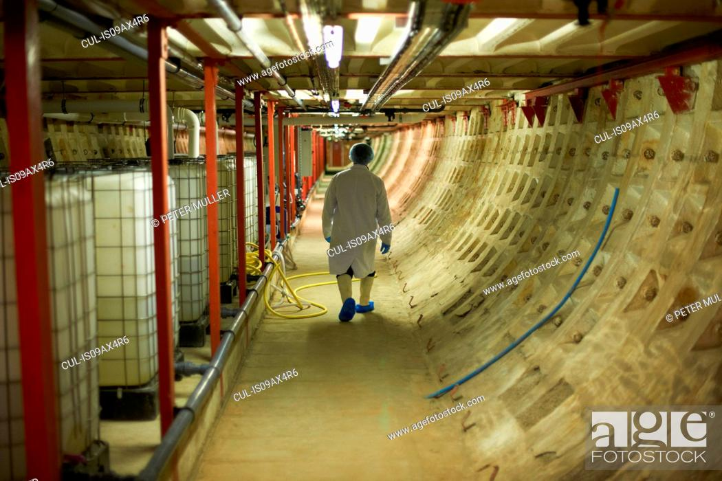 Stock Photo: Full length rear view of worker walking down corridor wearing hair net and disposable overshoes.