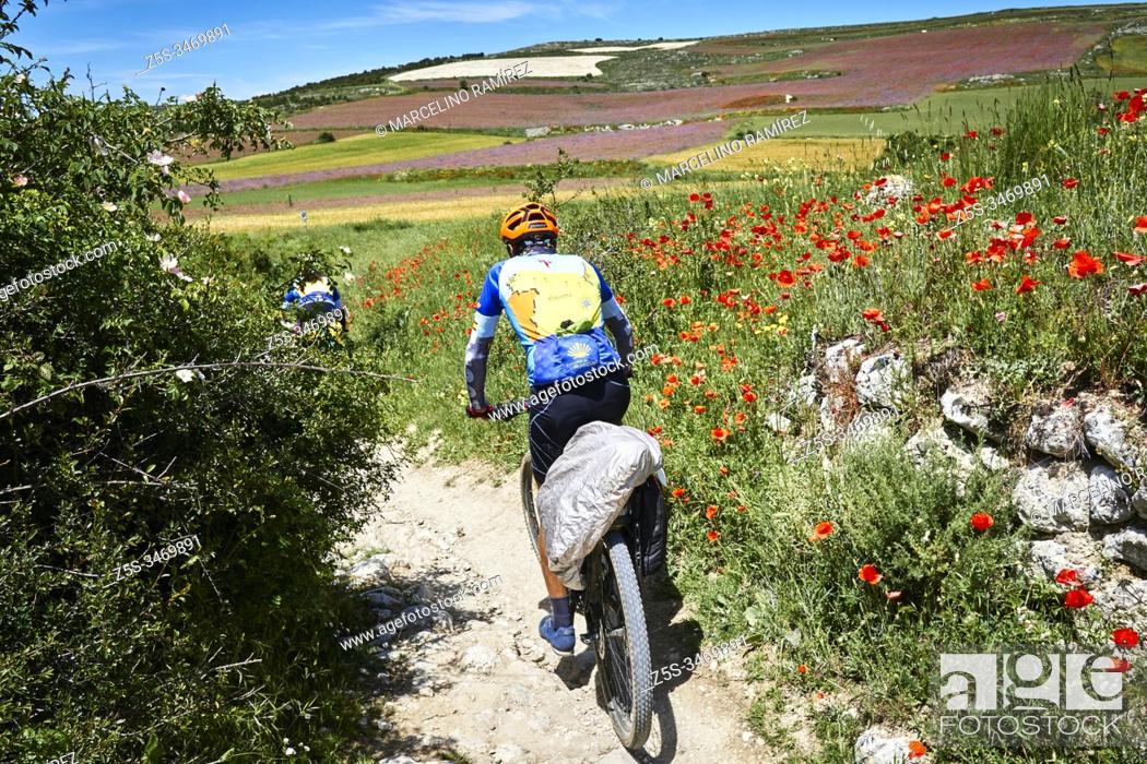 Stock Photo: Bike pilgrims. French Way, Way of St. James. Hontanas, Burgos, Castile and Leon, Spain, Europe.