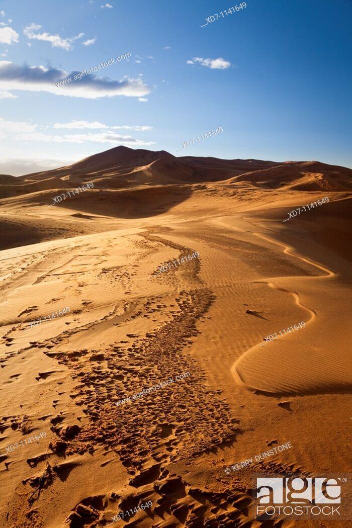 Stock Photo: Morocco Sahara Desert near Erfoud Erg Chebbi.