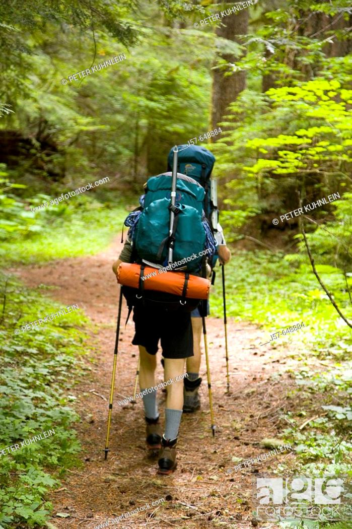Stock Photo: Hiking and climbing in Glacier Peak Wilderness. Washington USA. Hiking the approach trail in vergin old growth forest.
