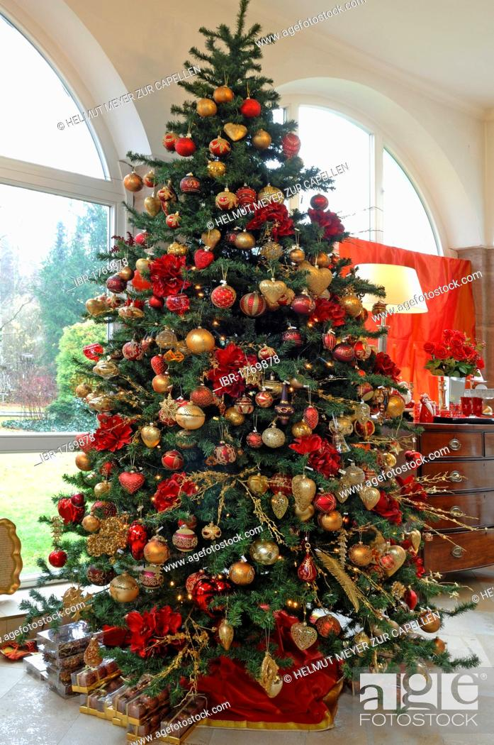 Stock Photo - Large decorated Christmas tree with Christmas decorations for sale in a winter garden, Villa & Ambiente, Nuremberg, Middle Franconia, Bavaria, ...