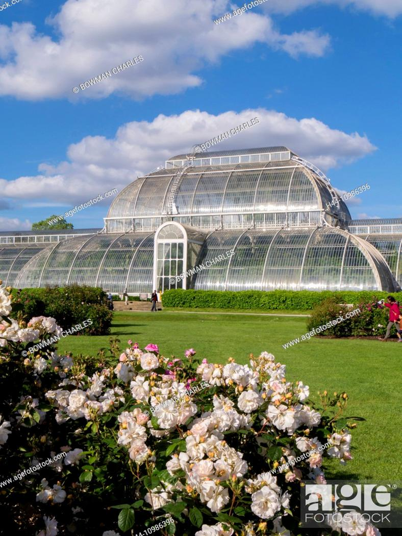 Imagen: Kew Gardens Palm House in London.