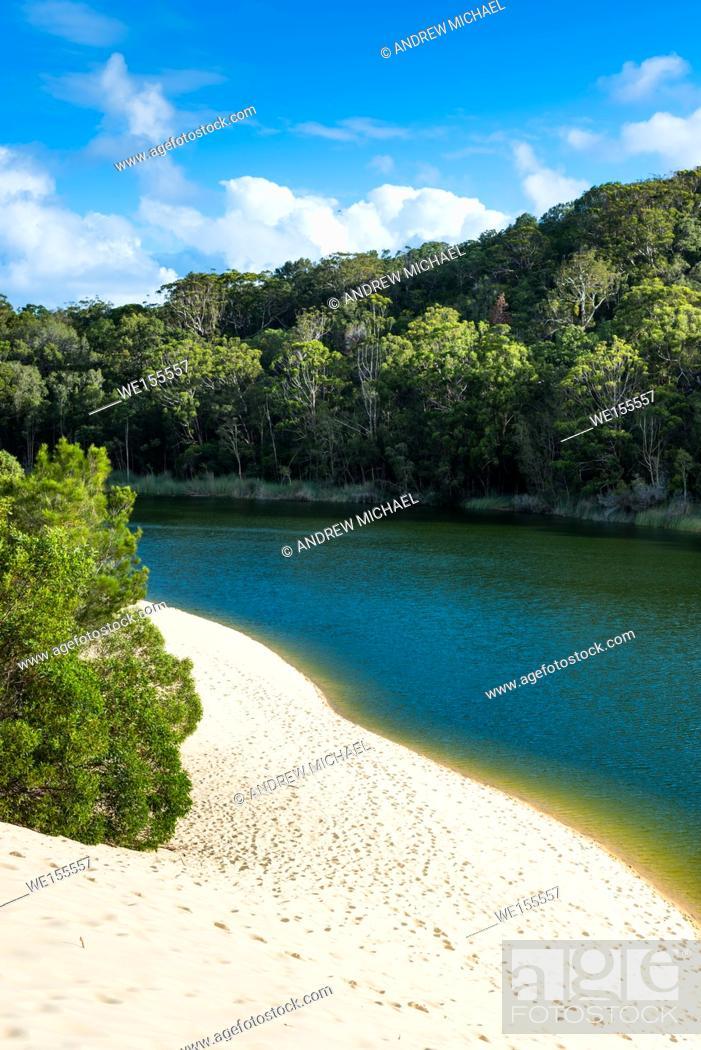 Stock Photo: Lake Wabby, Fraser Island, Queensland, Australia.