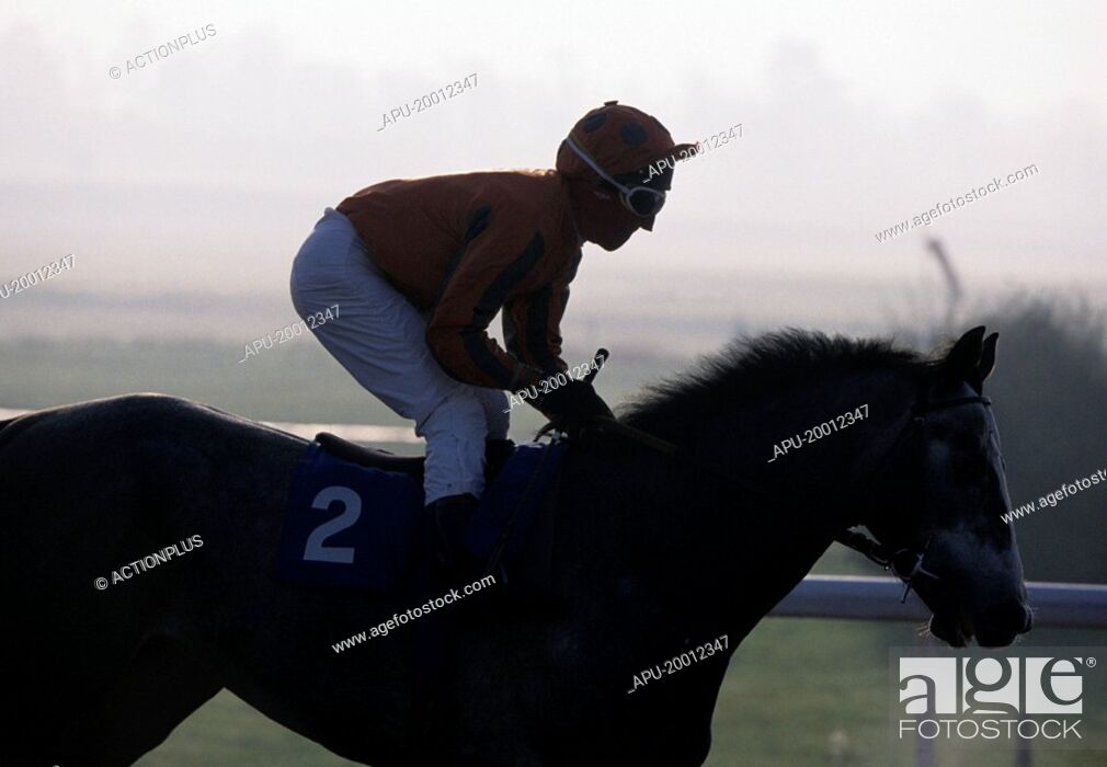 Imagen: Jockey pulls up his horse at end of horse race.