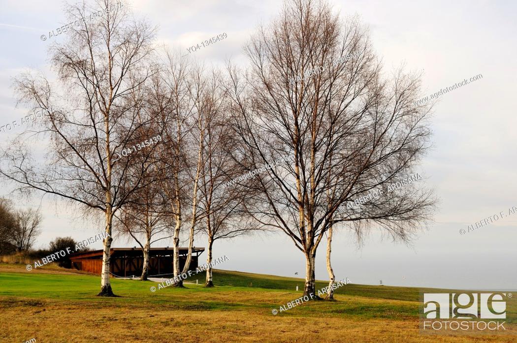 Stock Photo: Municipal golf courses in Llanes.