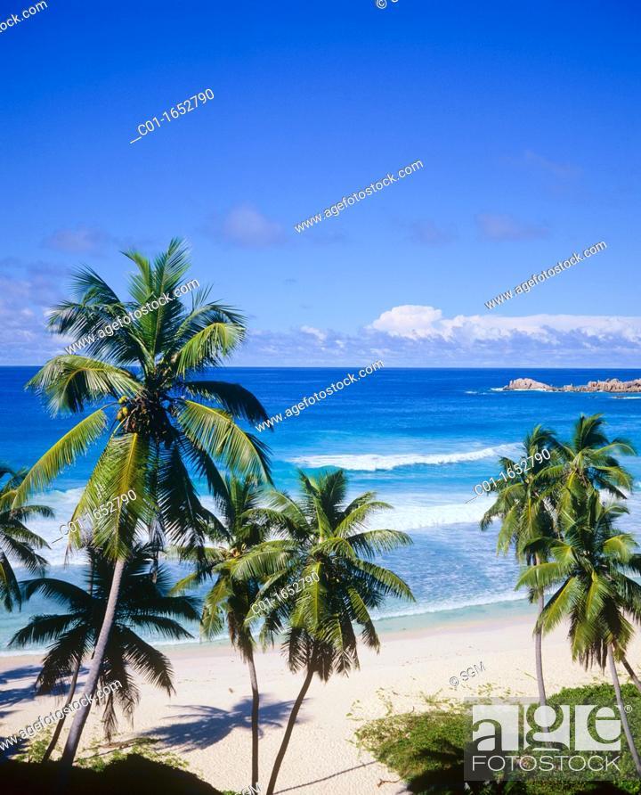 Stock Photo: Beach with palm trees, sea, La Digue island, Seychelles.