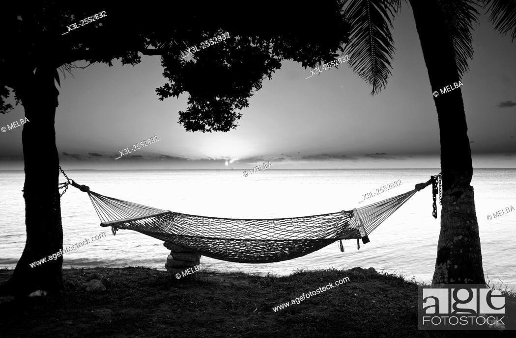 Stock Photo: Hammock. Lifuka island. Ha'apai islands. Tonga. Polynesia.