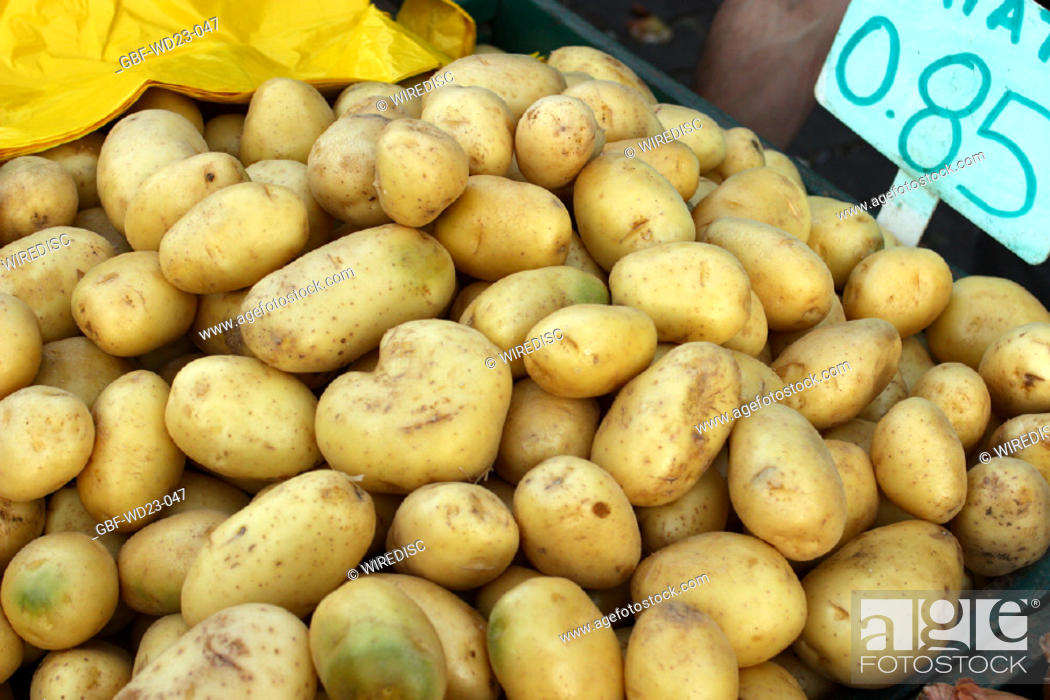 Stock Photo: Potato market, agriculture, Brazil.