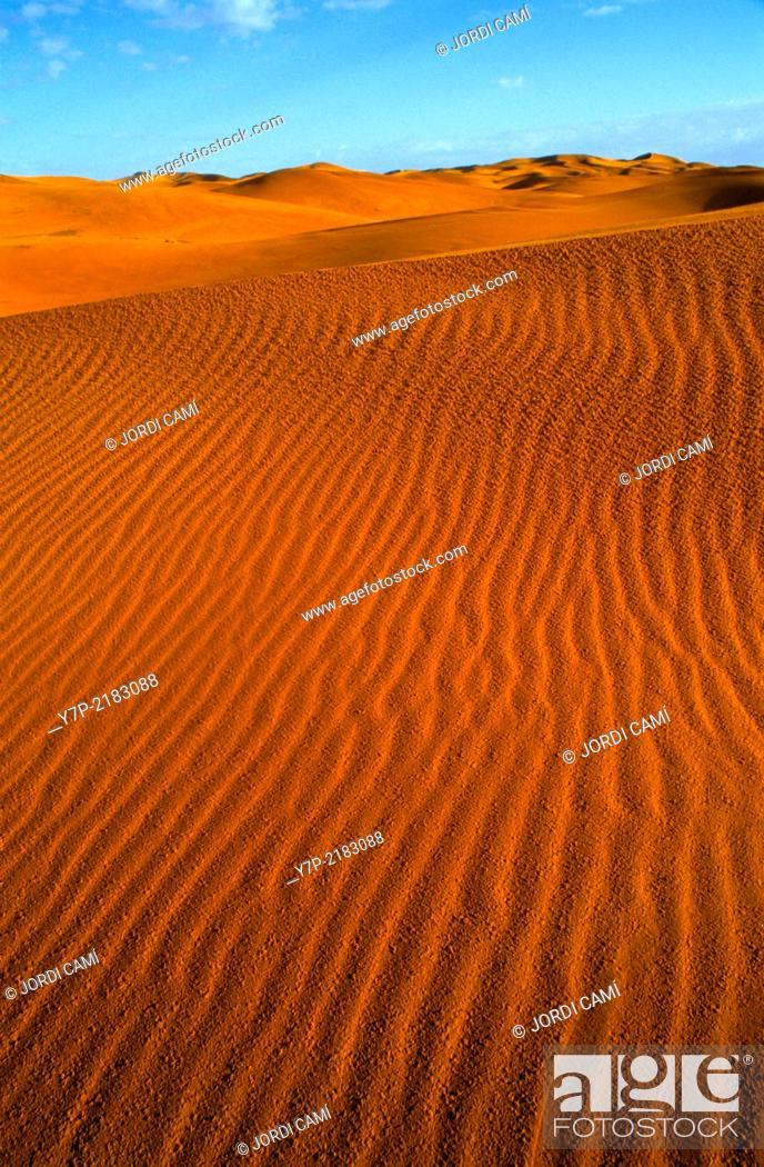 Stock Photo: Sand dunes at sunrise. Merzouga, Sahara desert .Morocco. Africa.