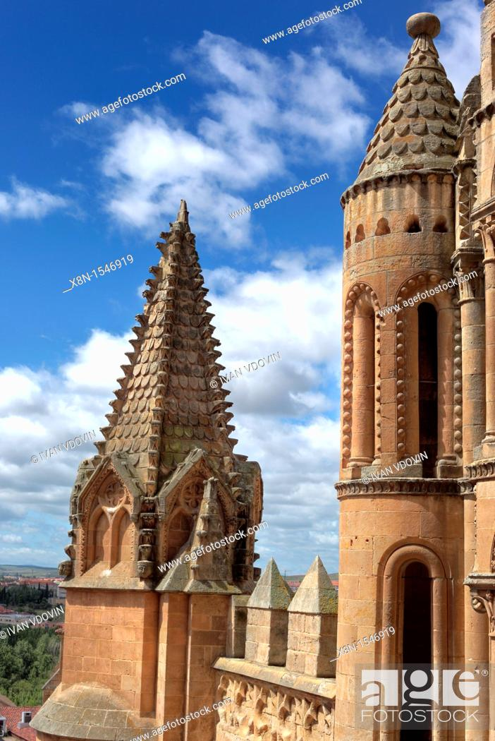 Imagen: Old Cathedral Catedral Vieja de Santa Maria, Salamanca, Castile and Leon, Spain.