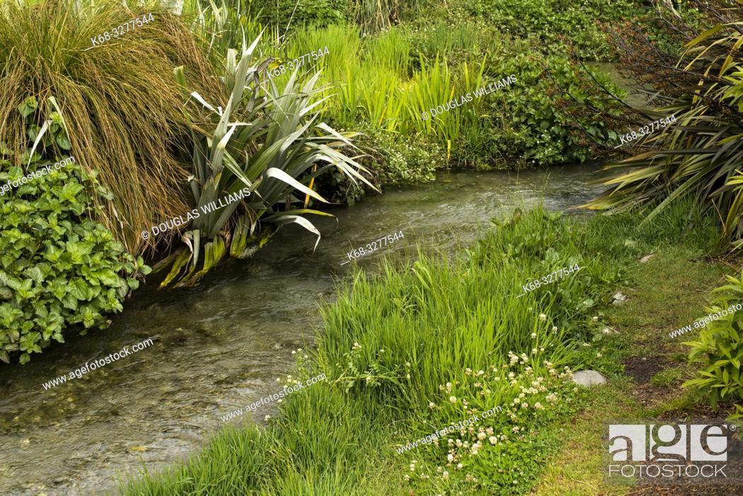 Imagen: garden in Queenstown, South Island, New Zealand.