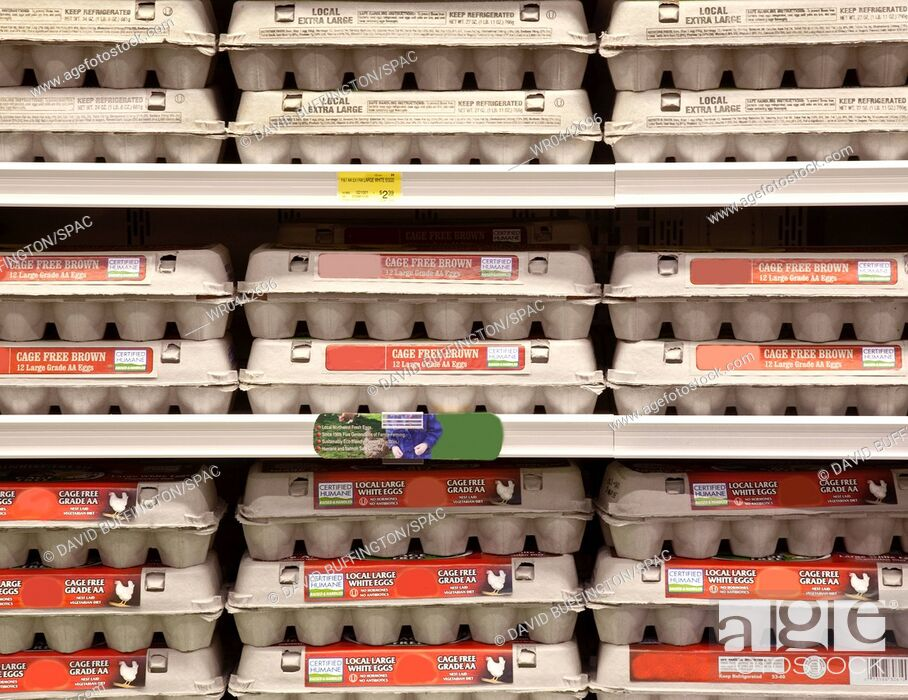 Imagen: Rows of Egg Cartons on Display.