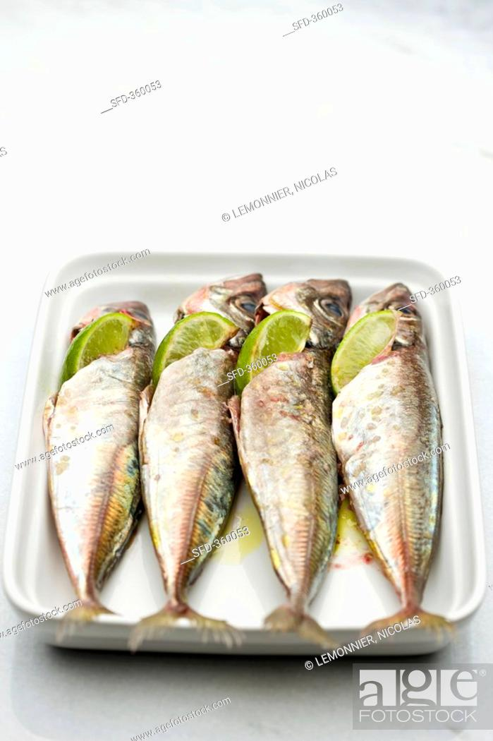 Stock Photo: Marinated sardines with lime wedges.