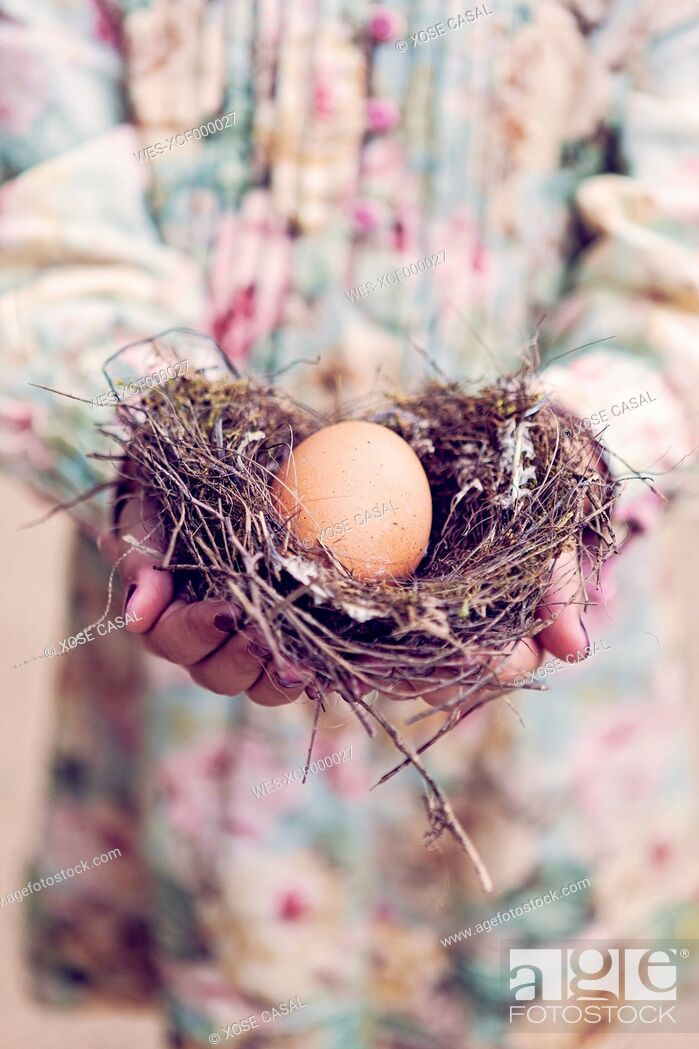 Photo de stock: Girl holding an egg in a nest.