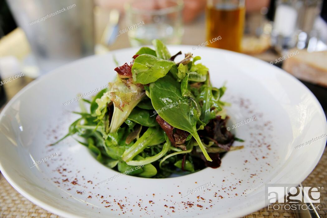 Imagen: Green Salad Beautifully Presented on a White China Plate, in an Elegant Restaurant.