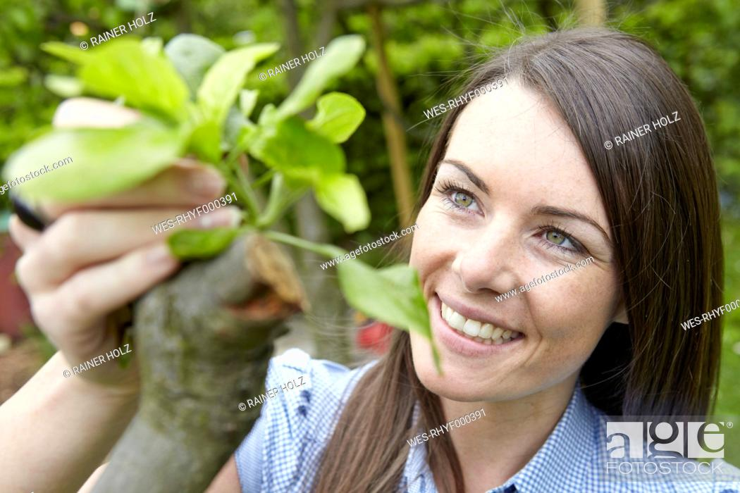 Stock Photo: Germany, Cologne, Young woman holding tree blossom, smiling.