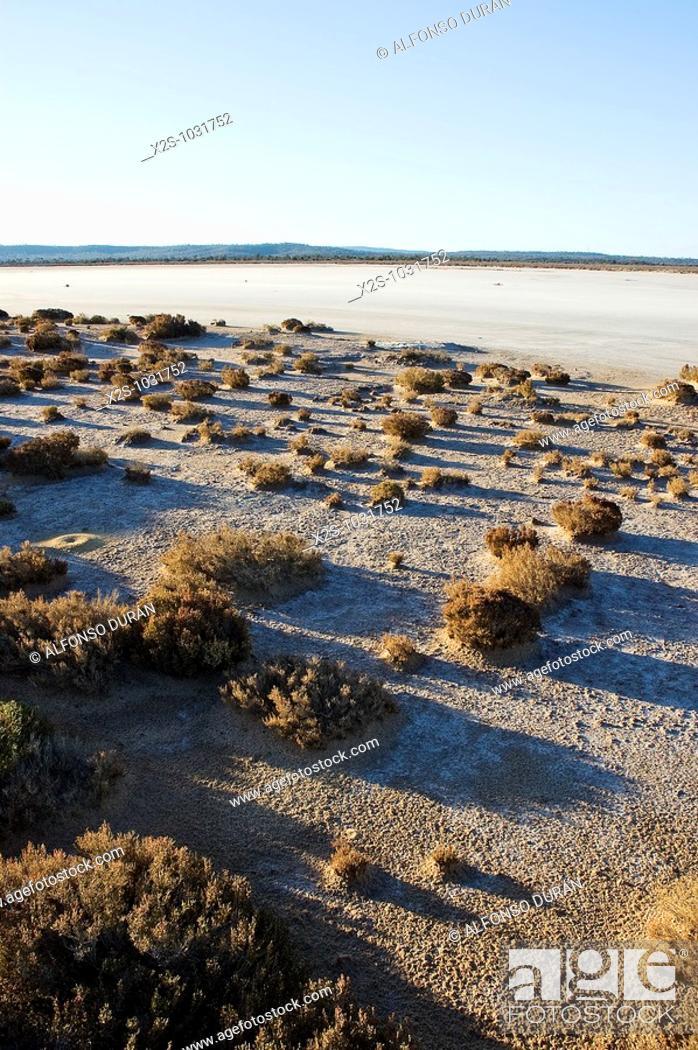 Stock Photo: Lake Cowan salt lake, Norseman, Western Australia, Australia.