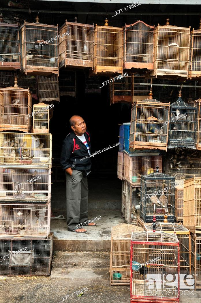 Imagen: Wooden cages filled with birds at the bird and animal market in Denpasar, Southern Bali, Indonesia.