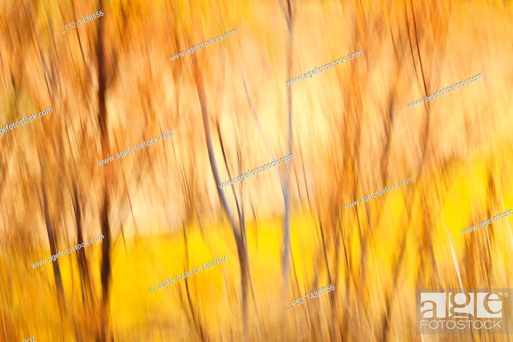 Stock Photo: Bardenas Reales, Navarra, Spain, Europe.