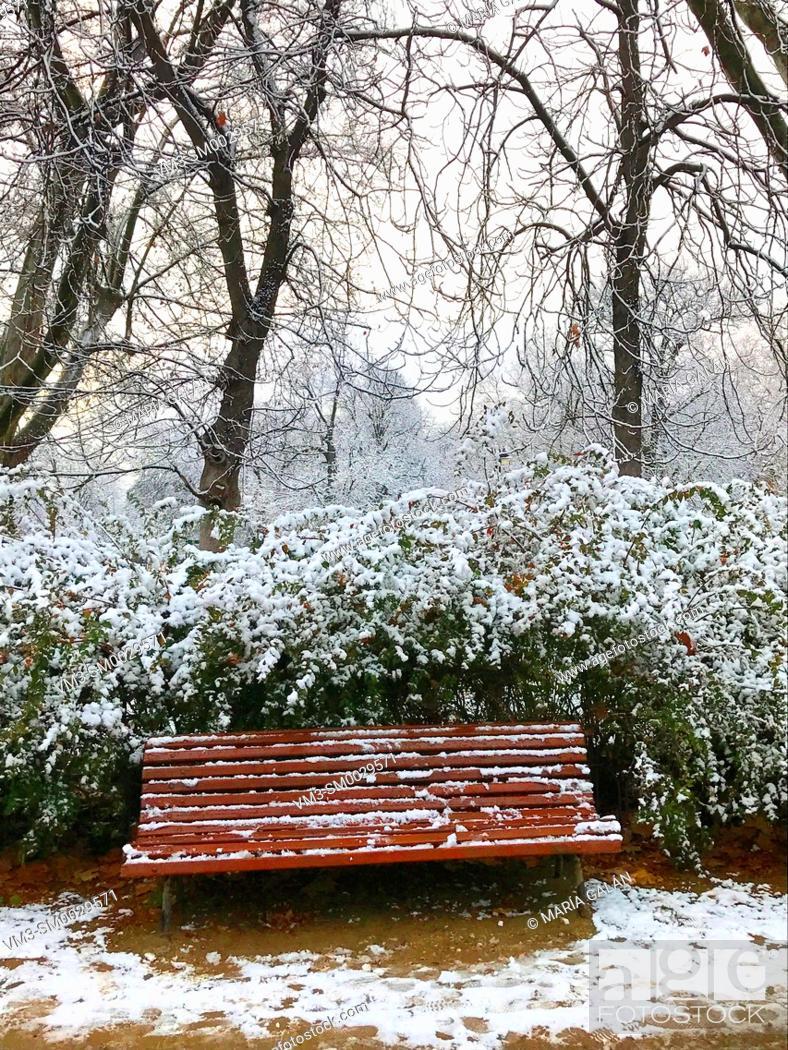 Stock Photo: Snowfall in El Retiro park. Madrid, Spain.