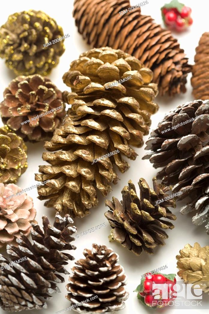 Stock Photo: Different sizes of pine cones.