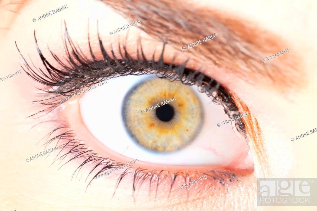 Stock Photo: Close up of human female eye with fake eyelashes.