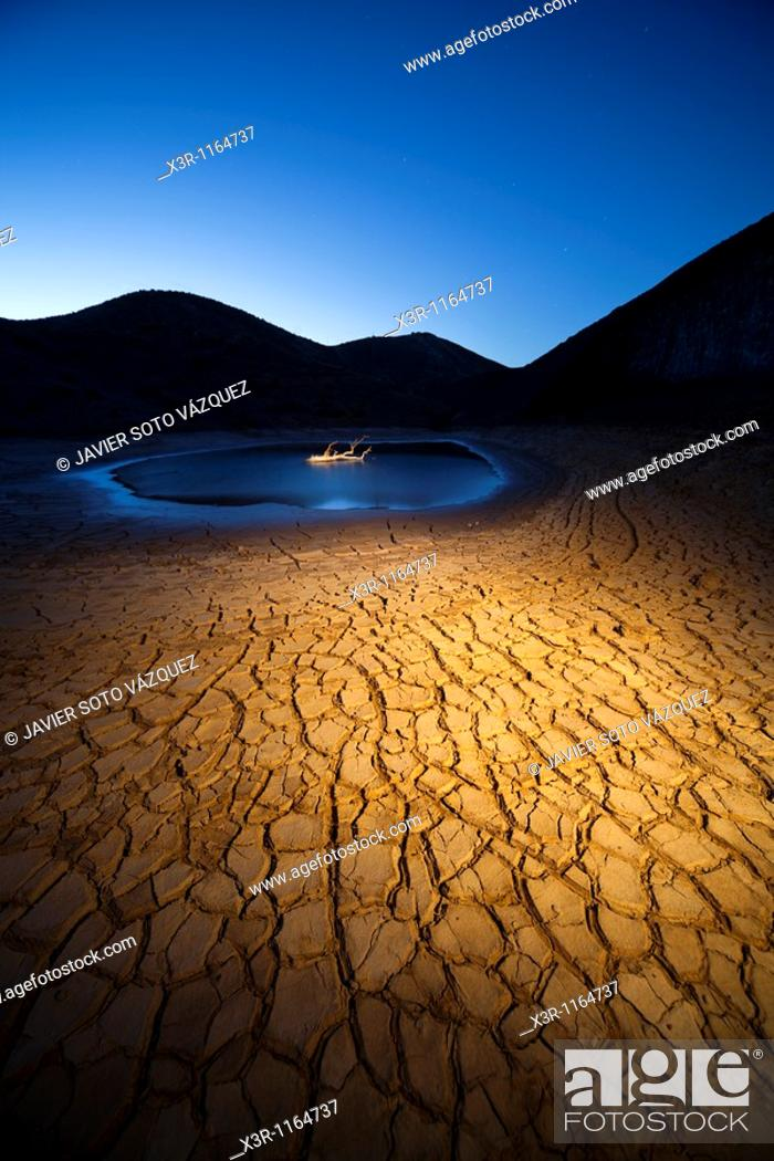 Stock Photo: Dusk in a land of drought in the bottom of a dry tree in water.