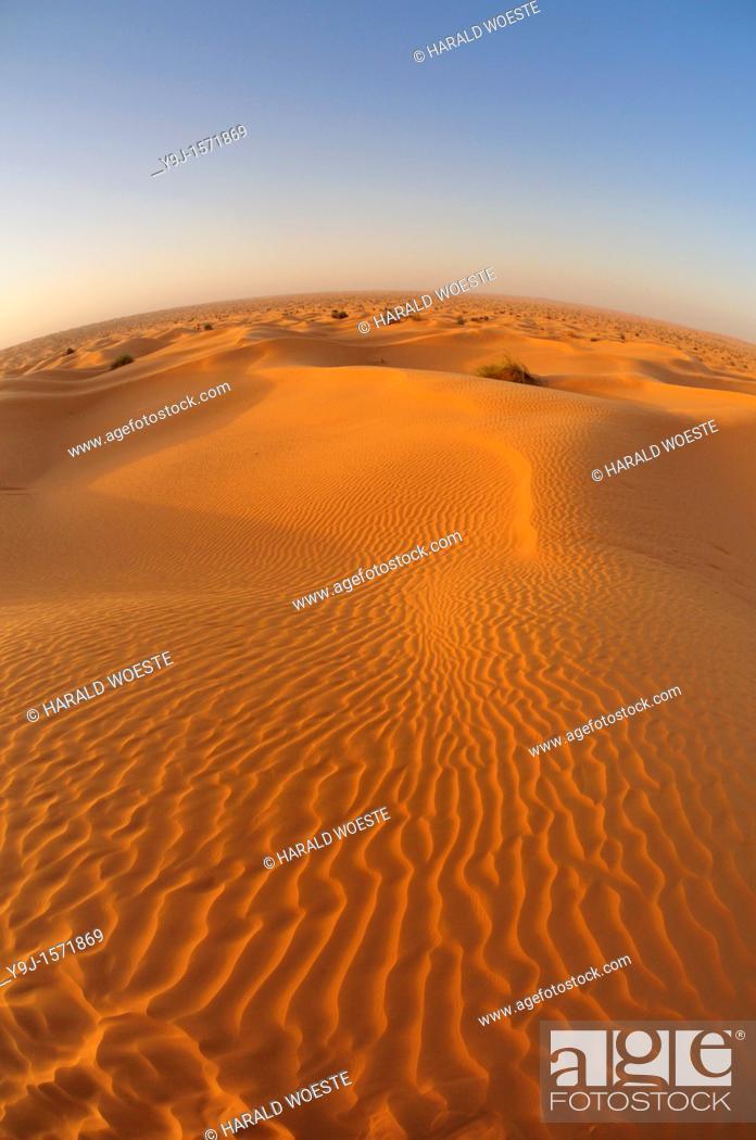Stock Photo: Africa, Tunisia, nr  Ksar Rhilane  Sunrise over Ksar Ghilane in the sand dunes on the eastern edge of the Grand Erg Oriental in the Sahara desert.