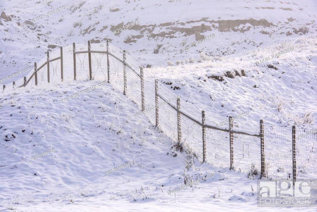 Stock Photo: Frosted fenceline in an autumn prairie, Havre, Montana, USA.