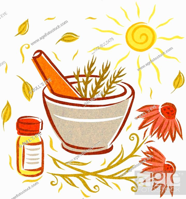 Stock Photo: Echinacea and natural herbs in a mortar and pestle.