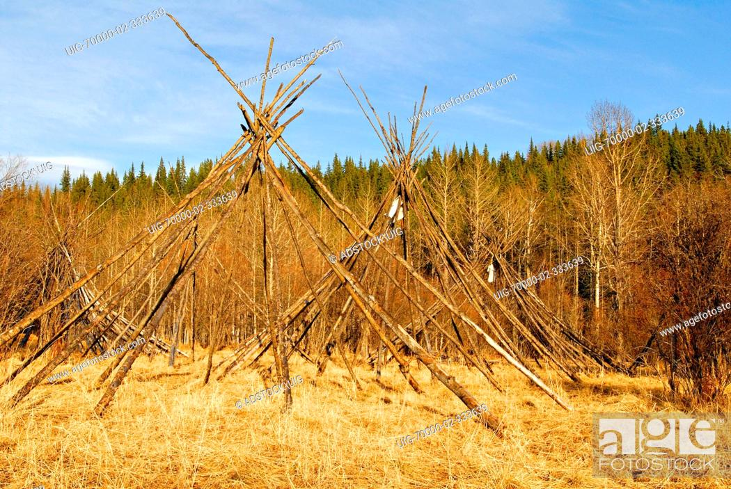 Stock Photo - Teepee lodge poles frame standing in a circle at a native  gathering site.