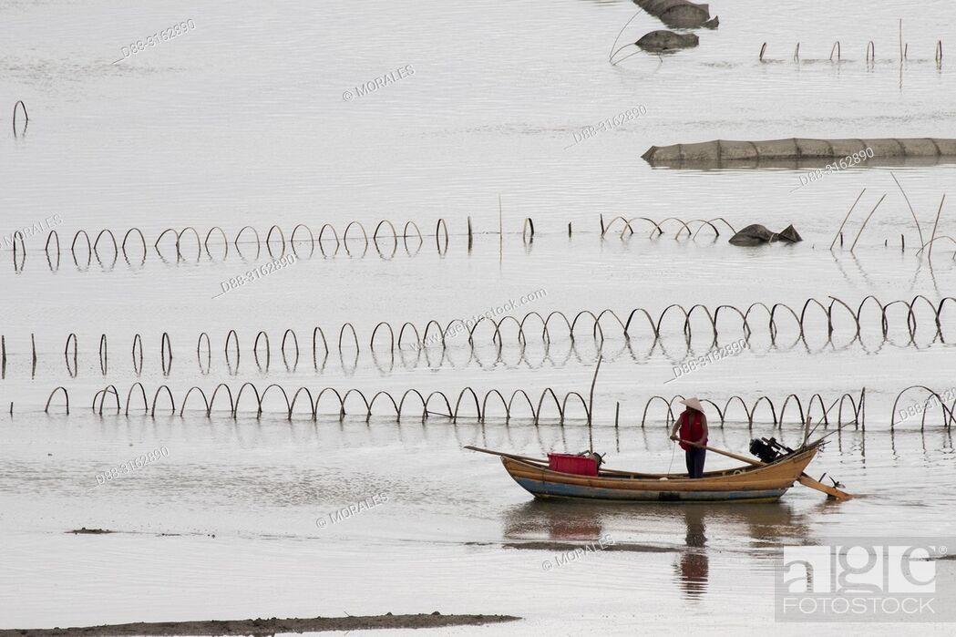 Stock Photo: China, Fujiang Province, Xiapu County, nets in open sea, Fish catching.