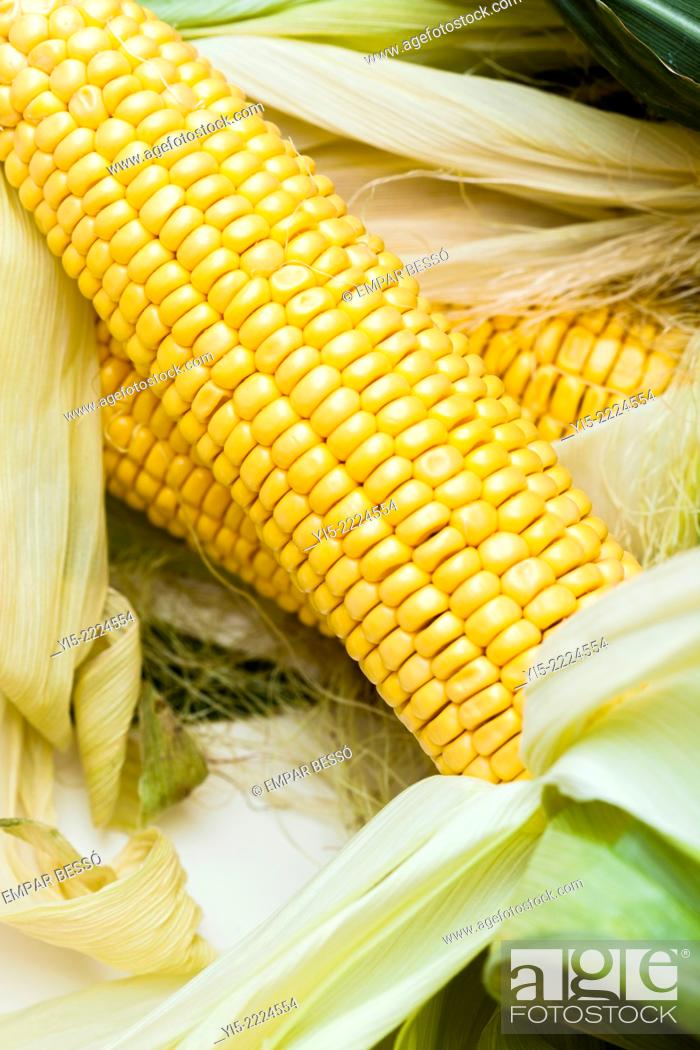 Stock Photo: Corn cobs.